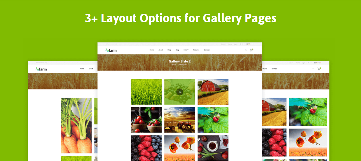 Name:  Efarm – Farm  Food   Organic WordPress Theme(9).pngViews: 1Size:  575.9 KB