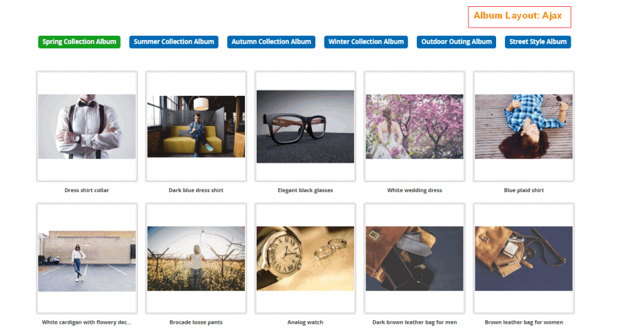 Name:  image_gallery_m2_album_layout_ajax.png