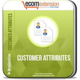 Name:  customer-attributes.png