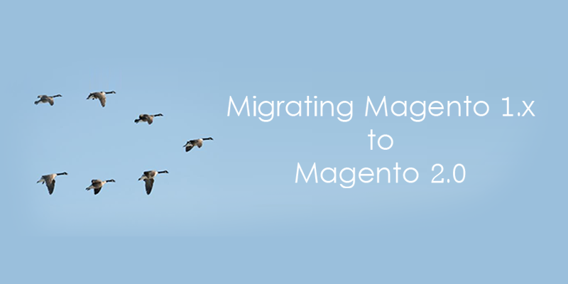 Name:  Magento 1.x to Magento 2.x Migration.png Views: 4 Size:  121.7 KB